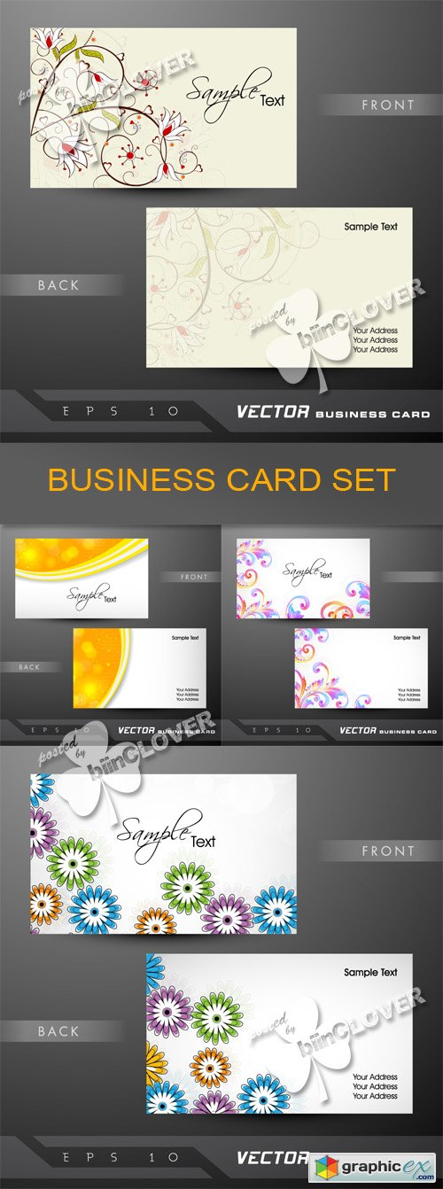 Vector Business card set 0506