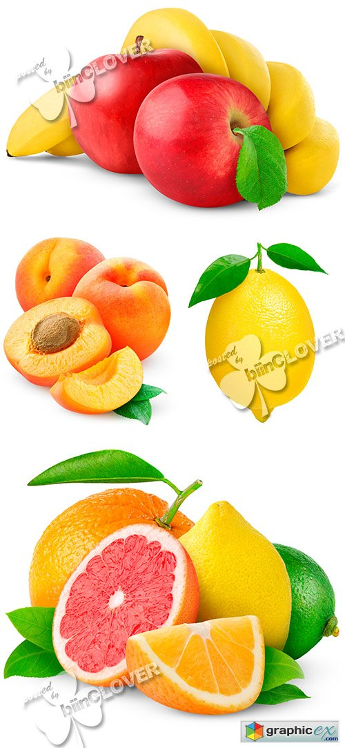 Fresh fruits and citrus 0490