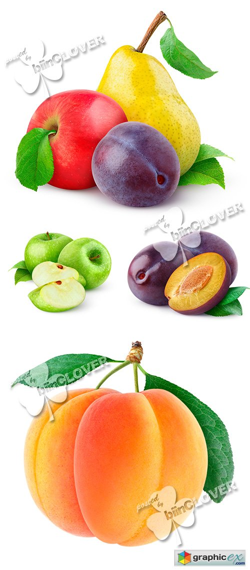 Collection of fruits 0487