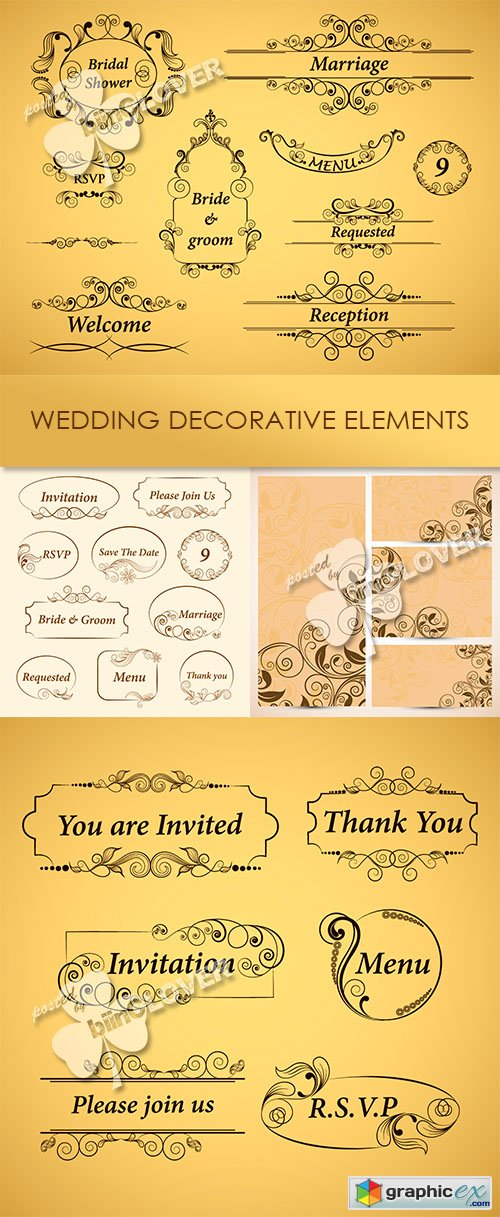 Vector Wedding decorative elements 0480