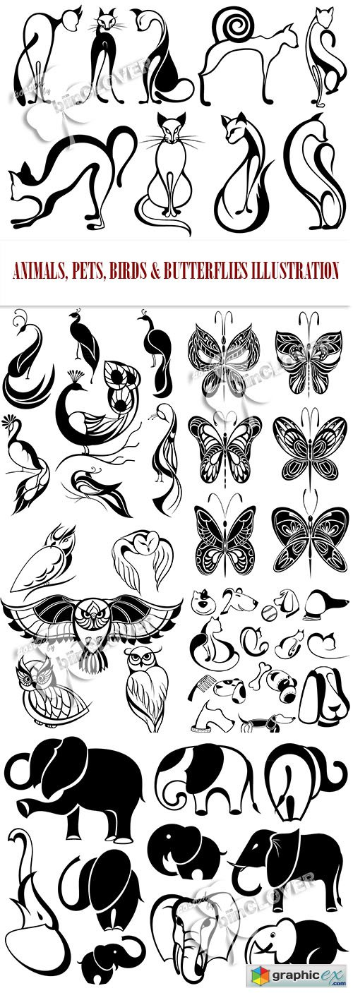 Vector Animals, pets, birds and butterflies illustration 0464