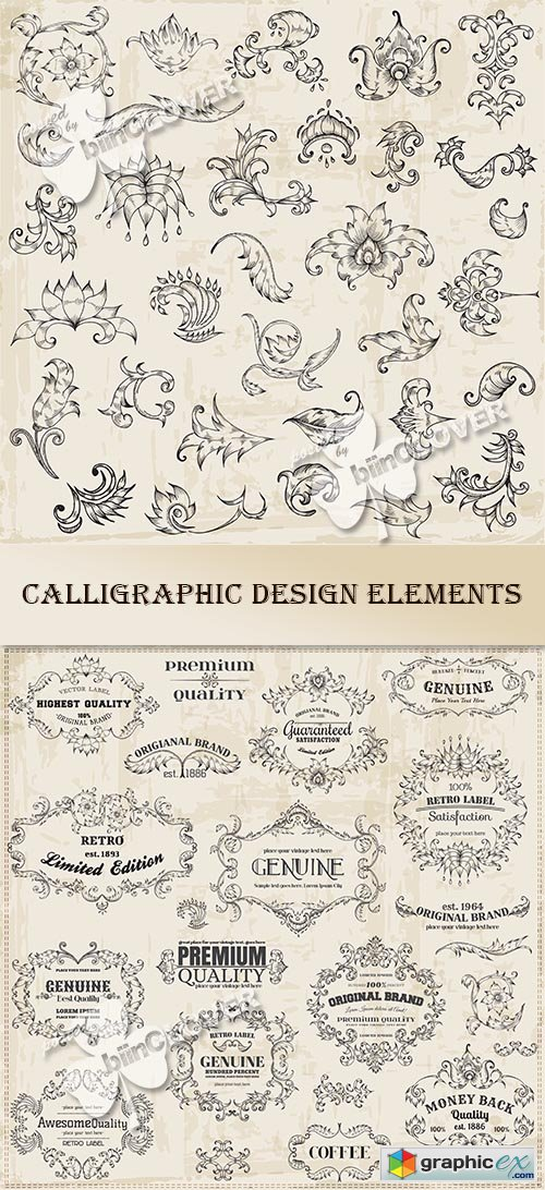 Vector Calligraphic design elements 0464