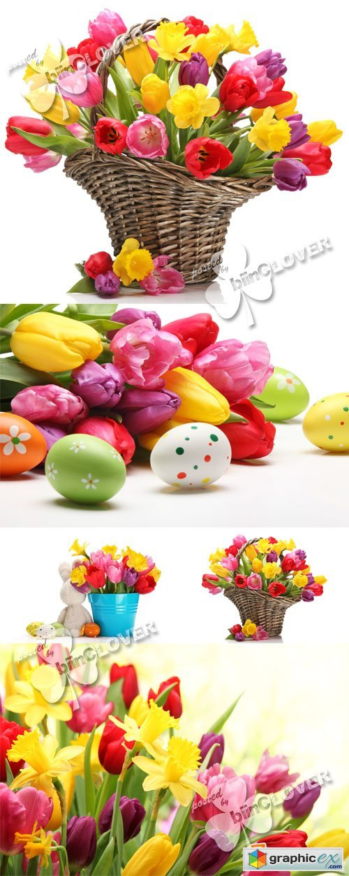 Easter background with tulips 0397