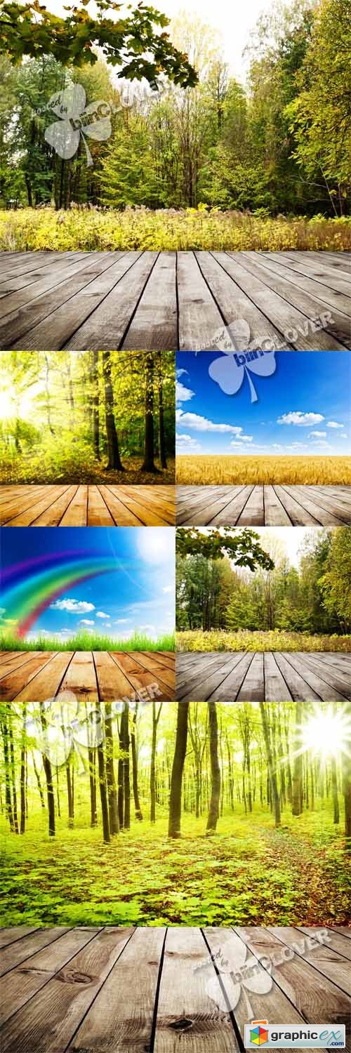 Nature background 0385
