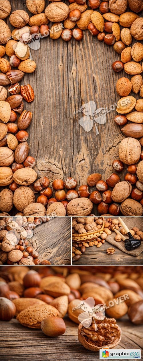 Vector Assorted nuts 0381