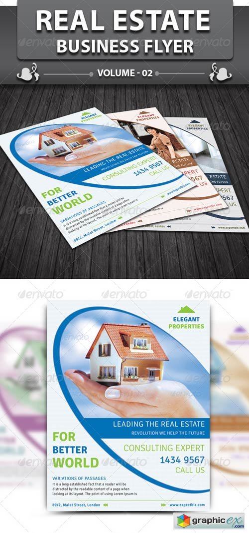 Real Estate Business Flyer v2