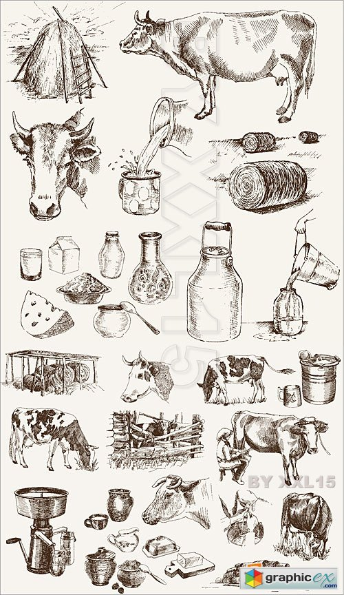 Vector Cow and milk products