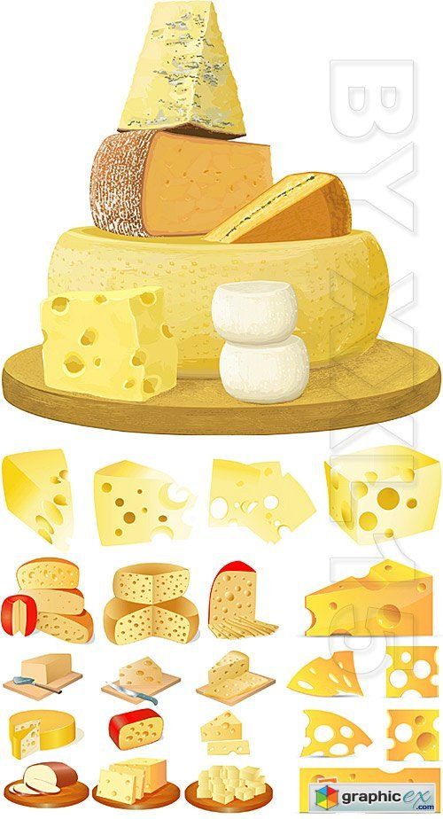 Vector Different types of cheese