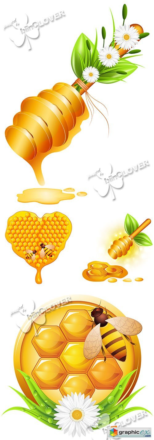 Vector Honey 0576