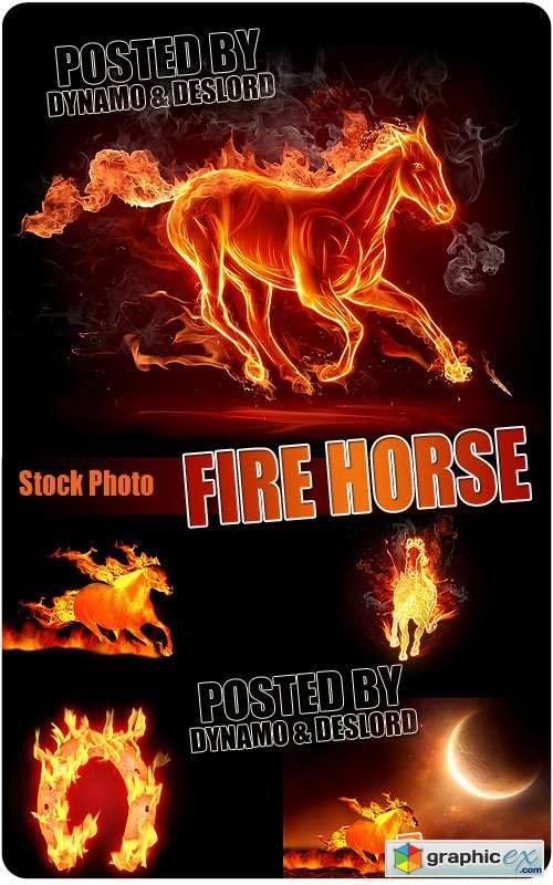 Fire Horse - UHQ Stock Photo