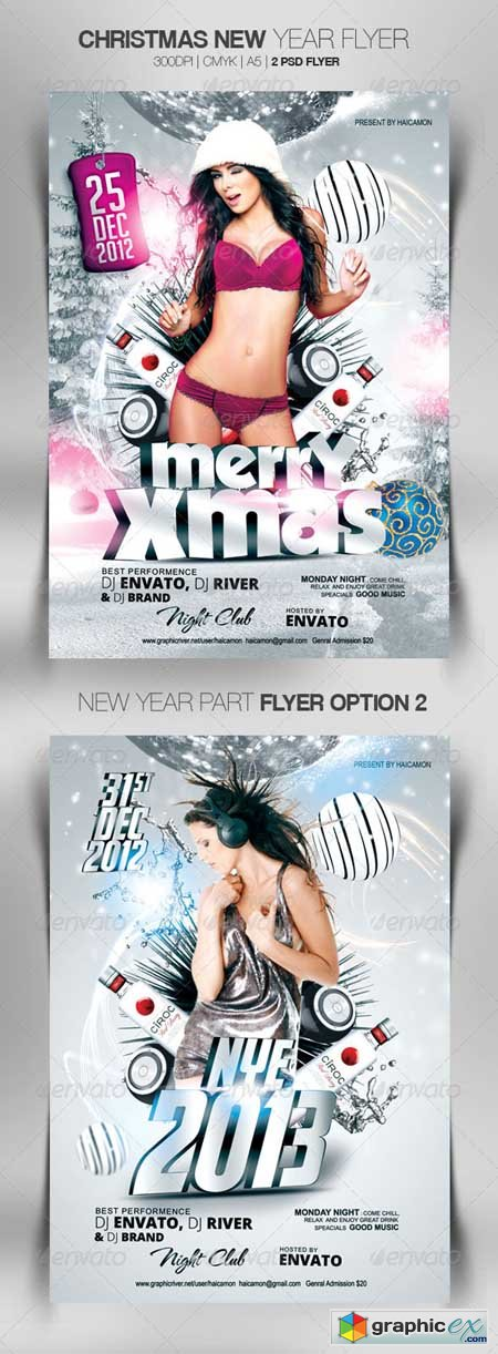 Christmas New Year Flyer 3578739