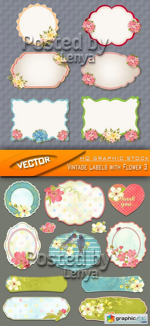 Stock Vector - Vintage Labels with Flower 3