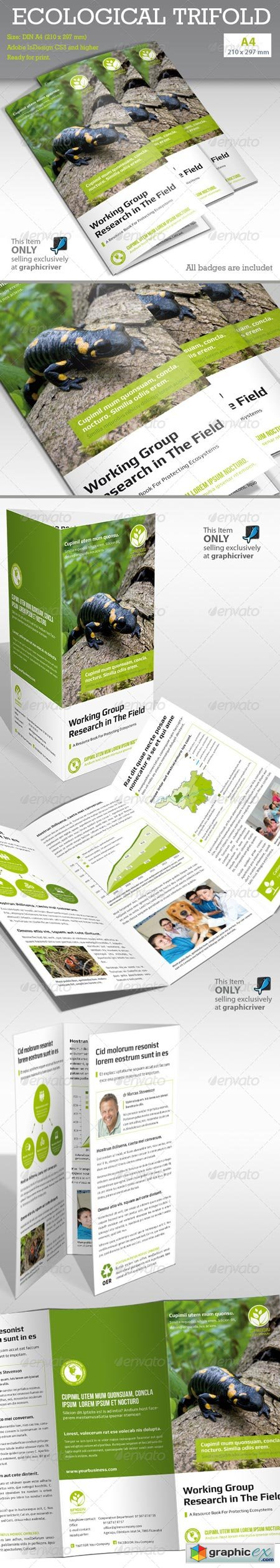 Ecological Report Tri-fold 6507512