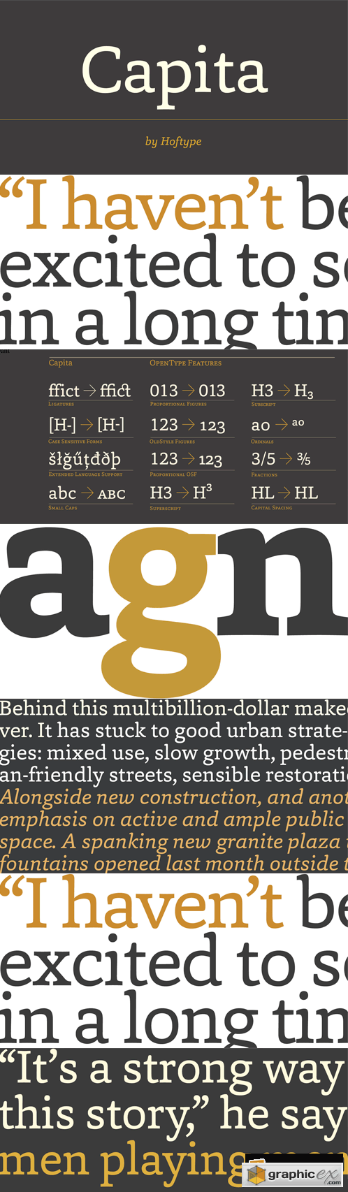 Capita Font Family - 12 Fonts for $198