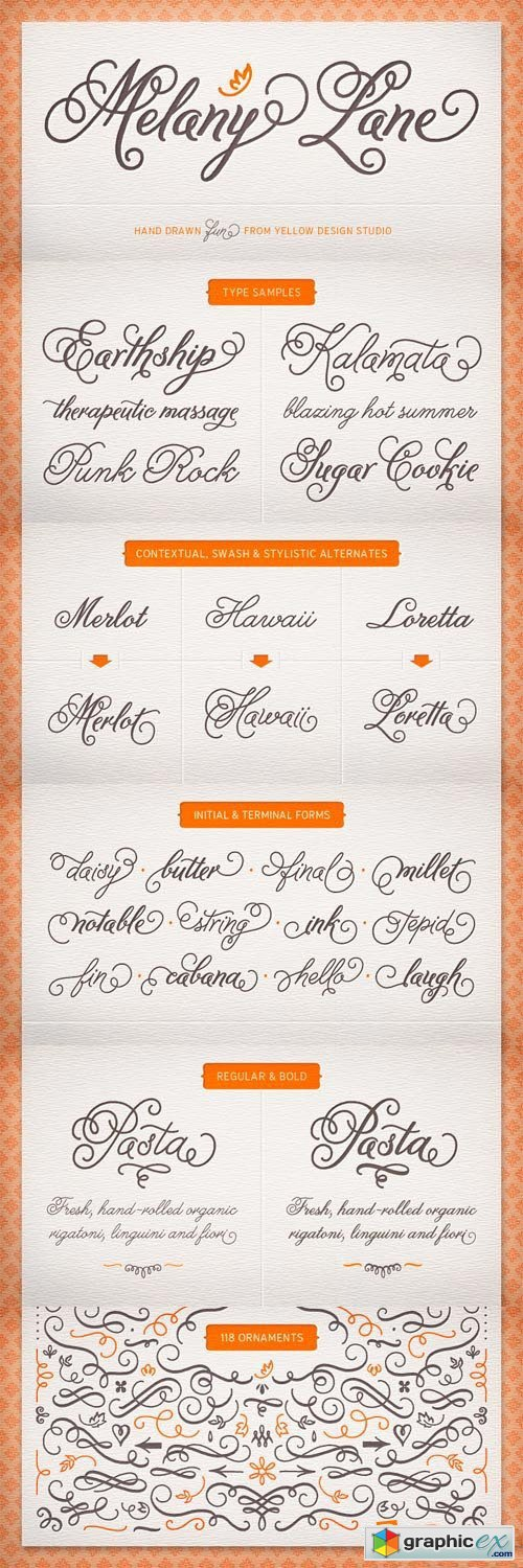 Melany Lane Font Family - 5 Fonts for $49