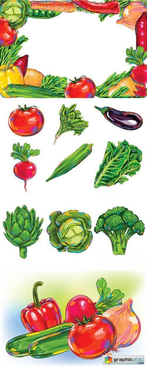 Amazing Vegetable Vector Illustrations 100xEPS
