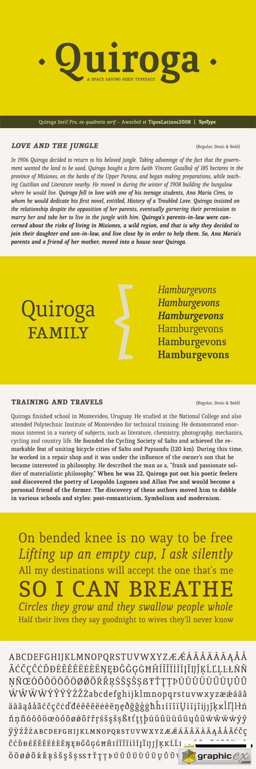 Quiroga Serif Pro Font Family - 6 Fonts for $150
