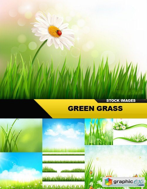 Green Grass - 25 Vector