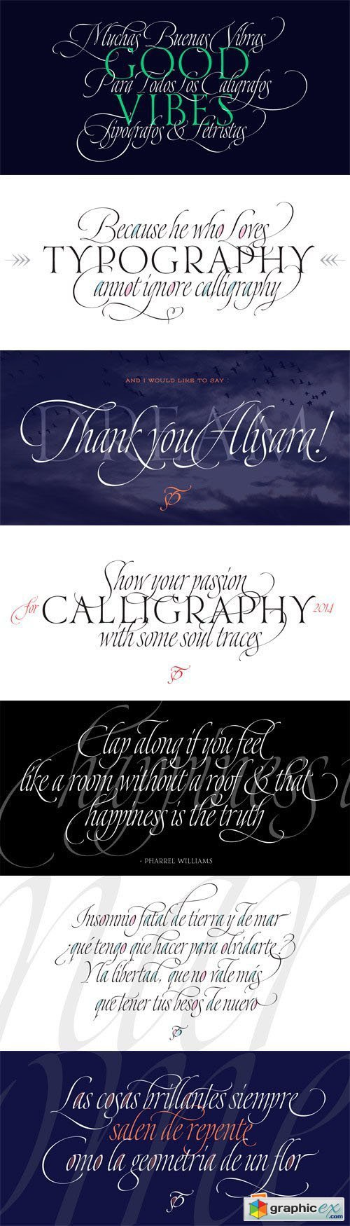 Dream Script Pro Font Family - 2 Fonts for $74