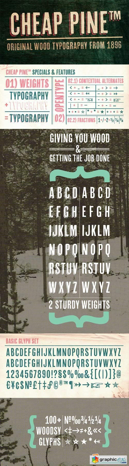 Cheap Pine Font Family - 3 Fonts » Free Download Vector Stock Image