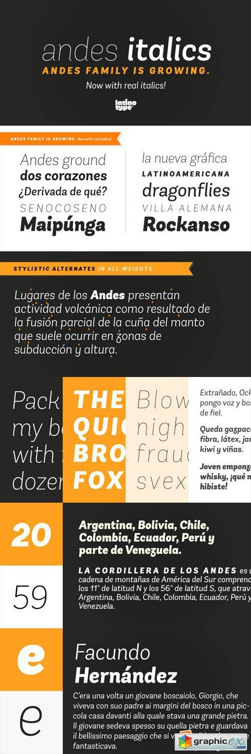 Andes Italic Font Family - 10 Fonts for $189