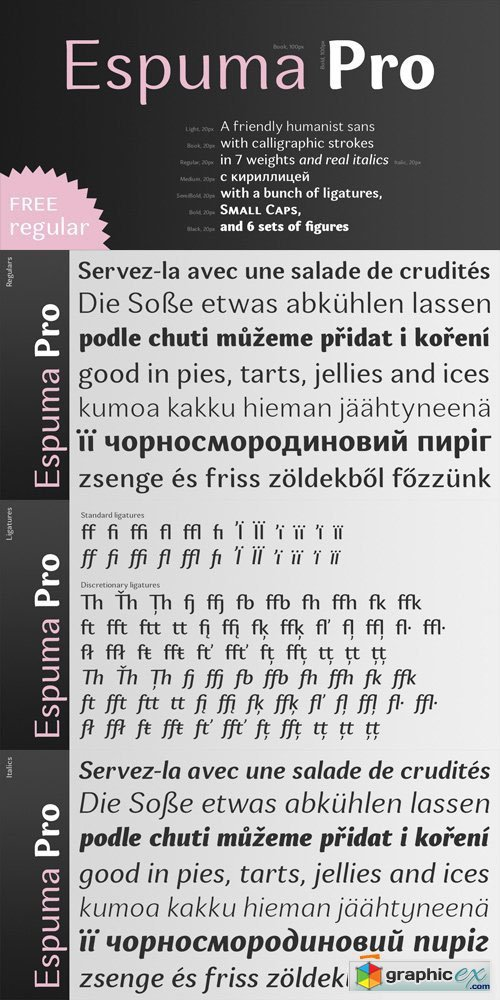 Espuma Pro Font Family - 14 Fonts for $260