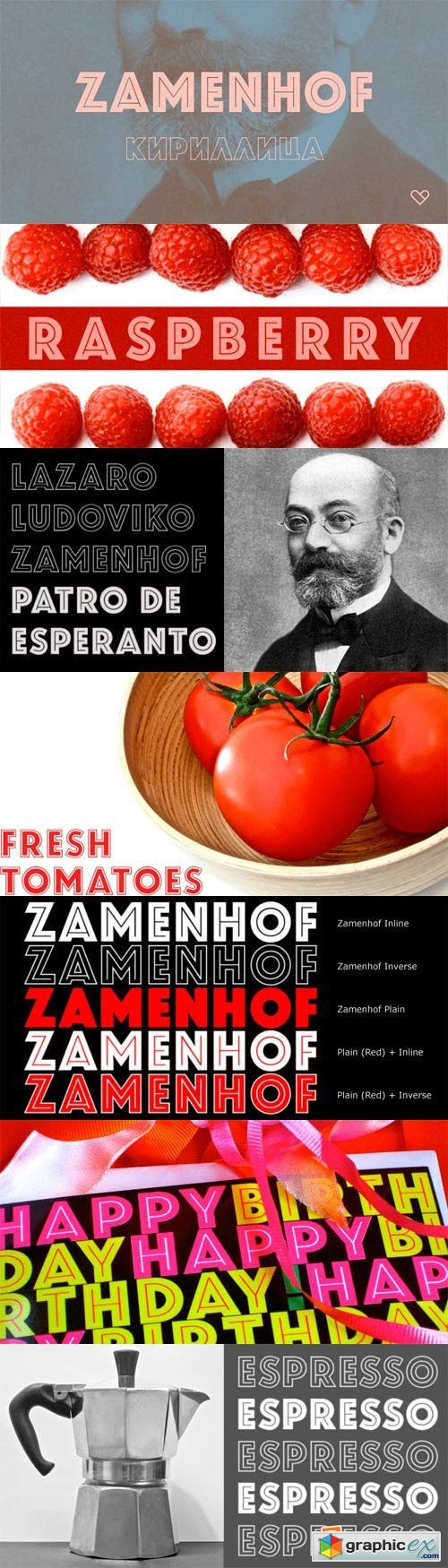 Zamenhof Font Family - 4 Fonts for $99