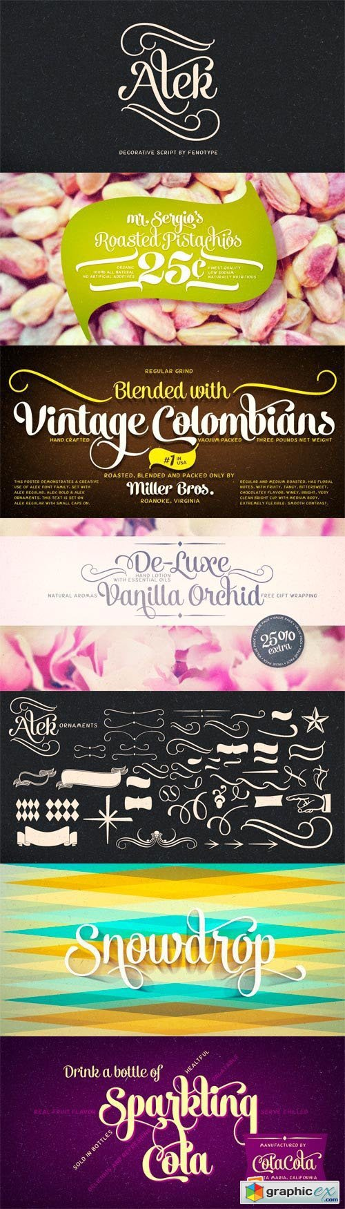 Alek Font Family - 5 Fonts for $32