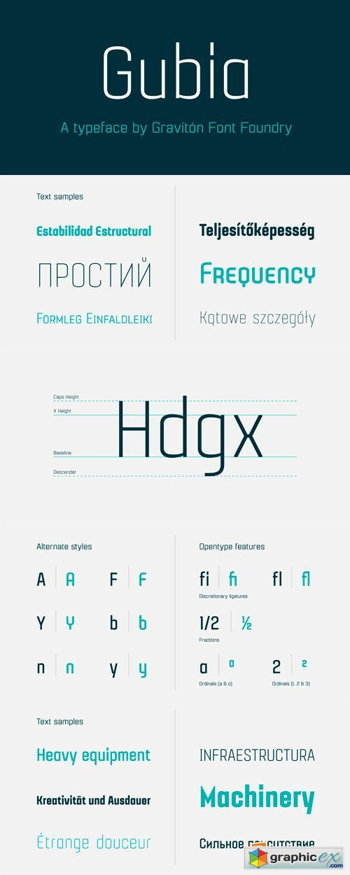 Gubia Font Family - 8 Fonts for $150