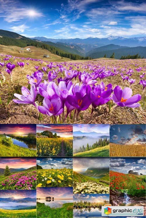 Beautiful landscape with mountains and flowers, 25xJPGs