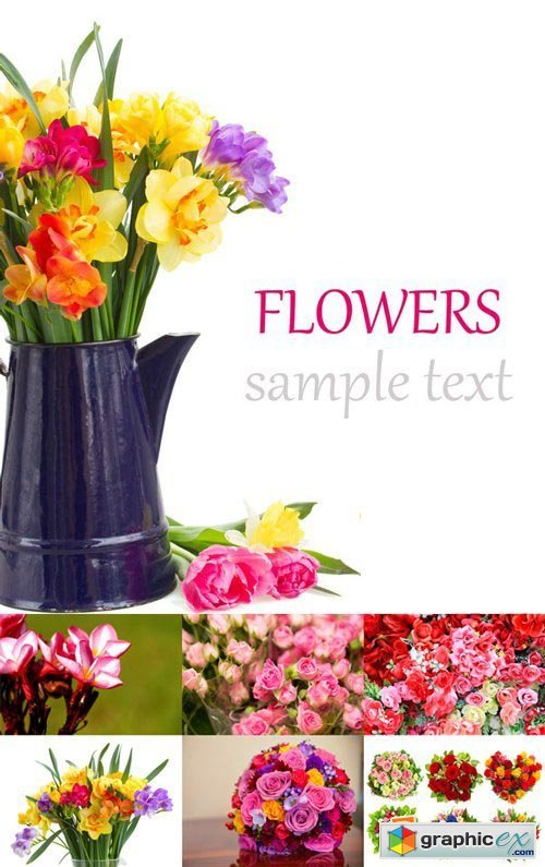 Stock Photos - Flowers, 25xJPG