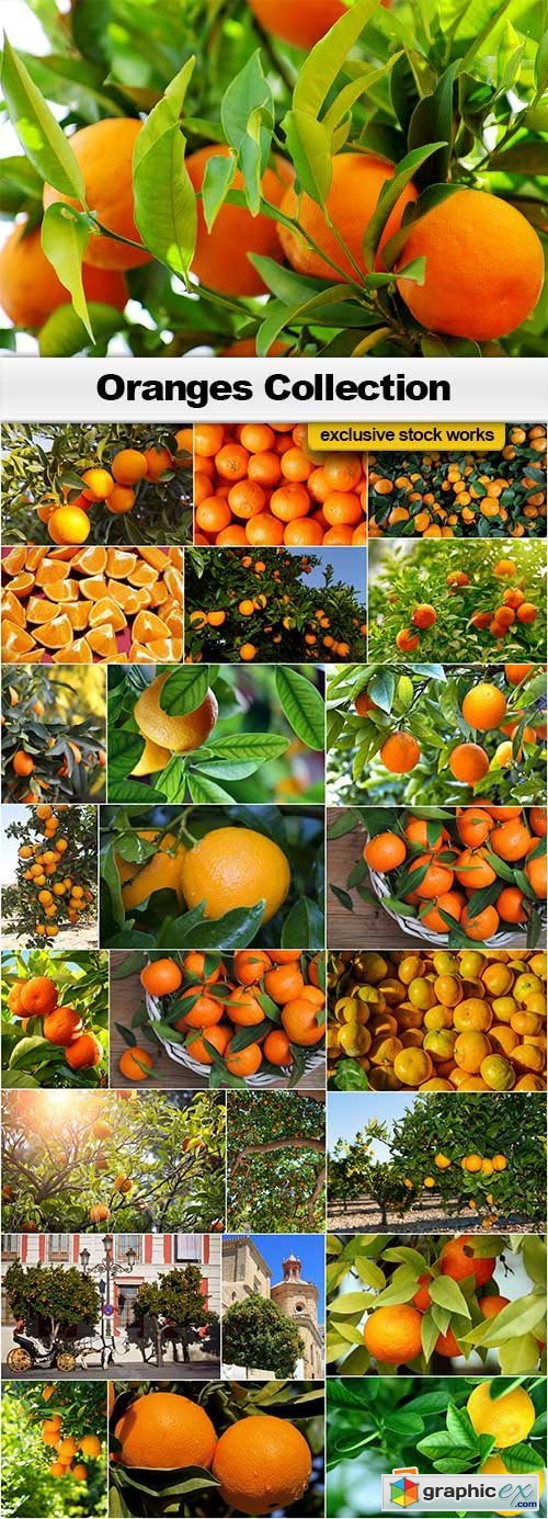 Oranges Collection - 25x JPEGs