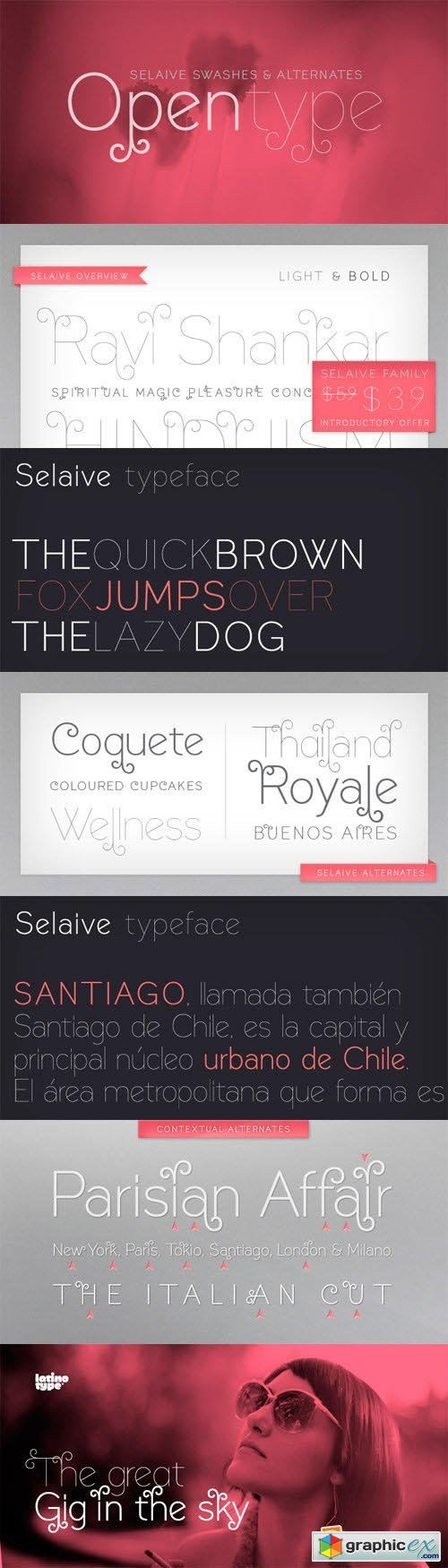Selaive Font Family - 2 Fonts for $59