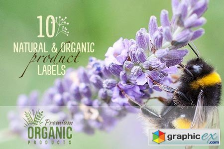 10 Natural & Organic Product Labels 44031