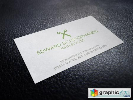 Indie Hair Stylist Business Card 45643