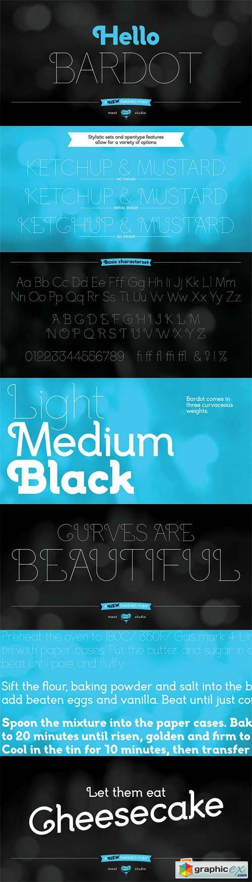 Bardot Font Family - 3 Fonts for $59