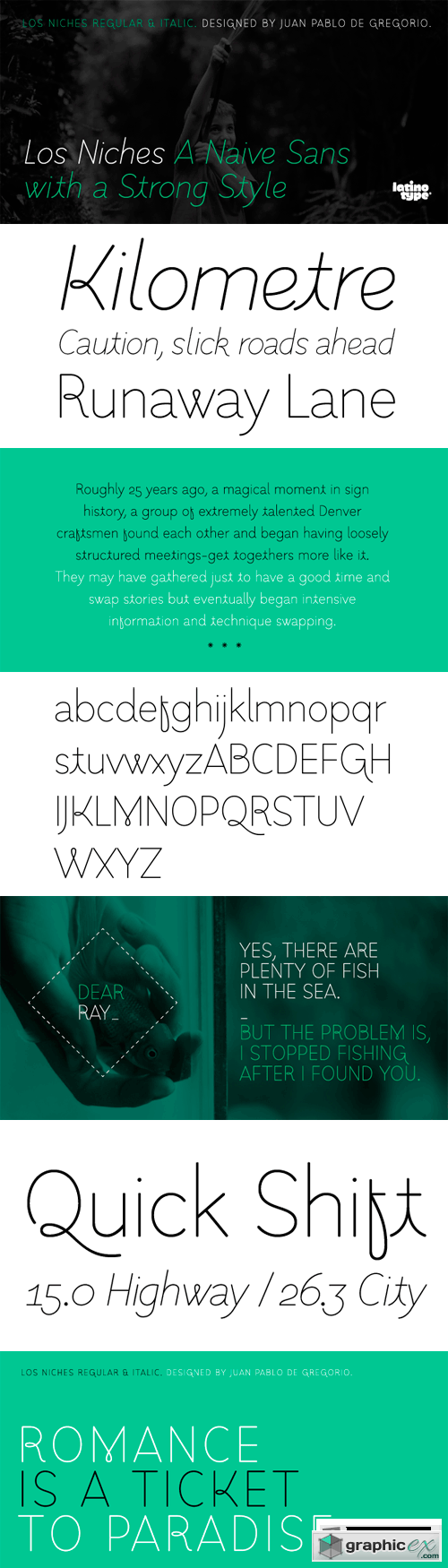 Los Niches Font Family - 2 Fonts for $59