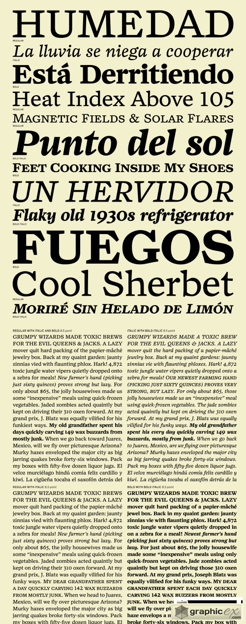 Zocalo Text Font Family - 12 Fonts for $210
