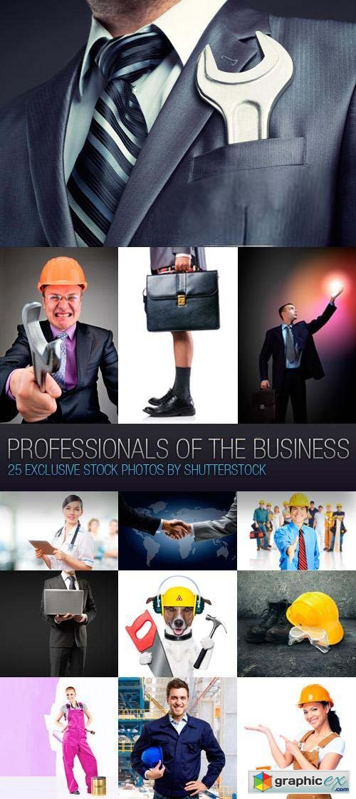 Professionals of the Business 26xJPG
