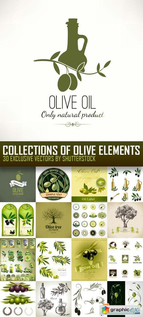 Collections of Olive Elements 30xEPS