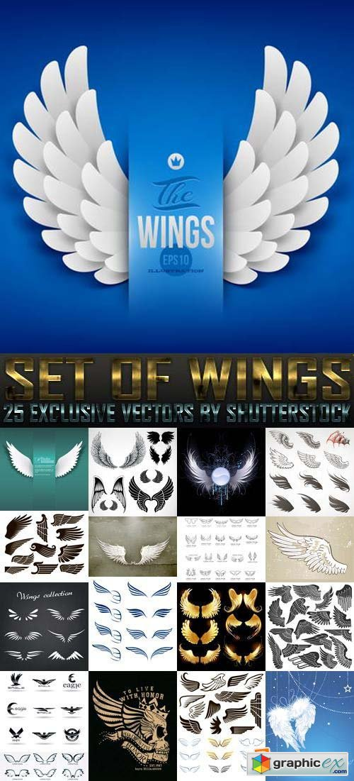 Set of Wings 25xEPS