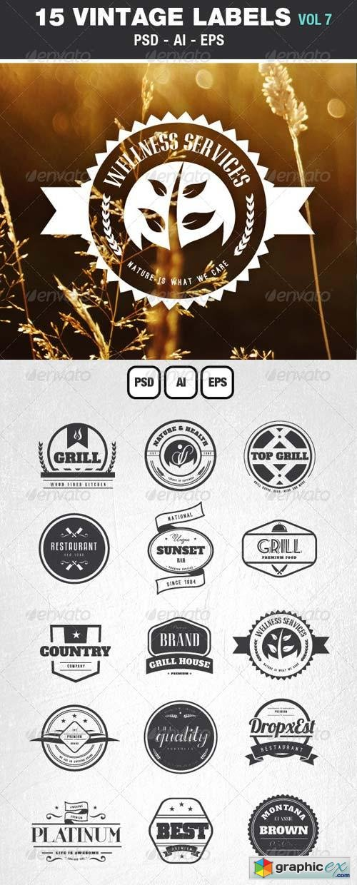 Retro Vintage Labels & Badges Logos V7