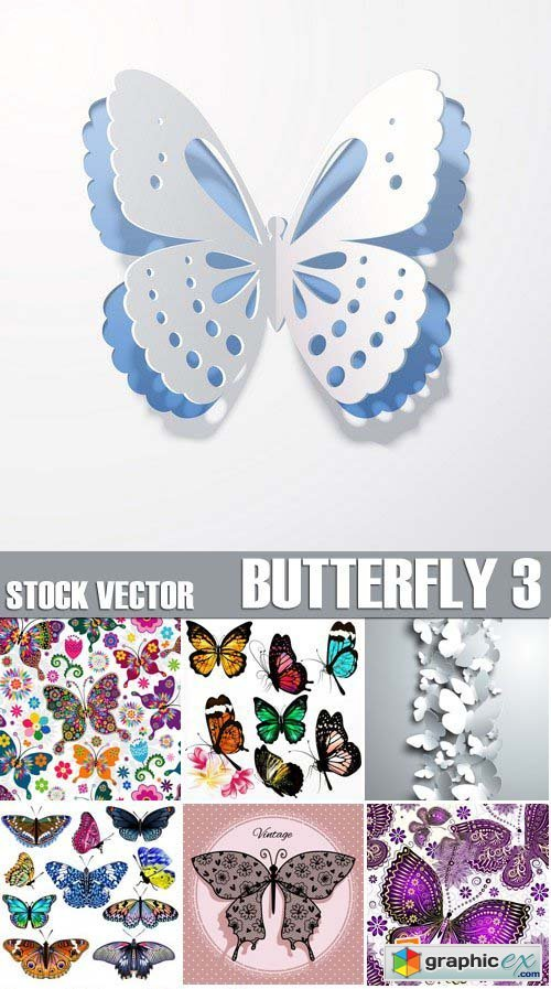 Stock Vectors - Butterfly 3, 25xEPS
