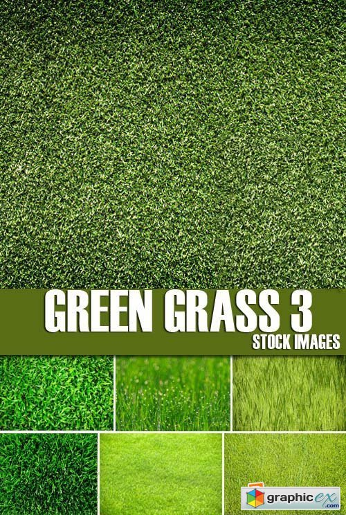 Stock Photos - Green grass 3, 25xJPG