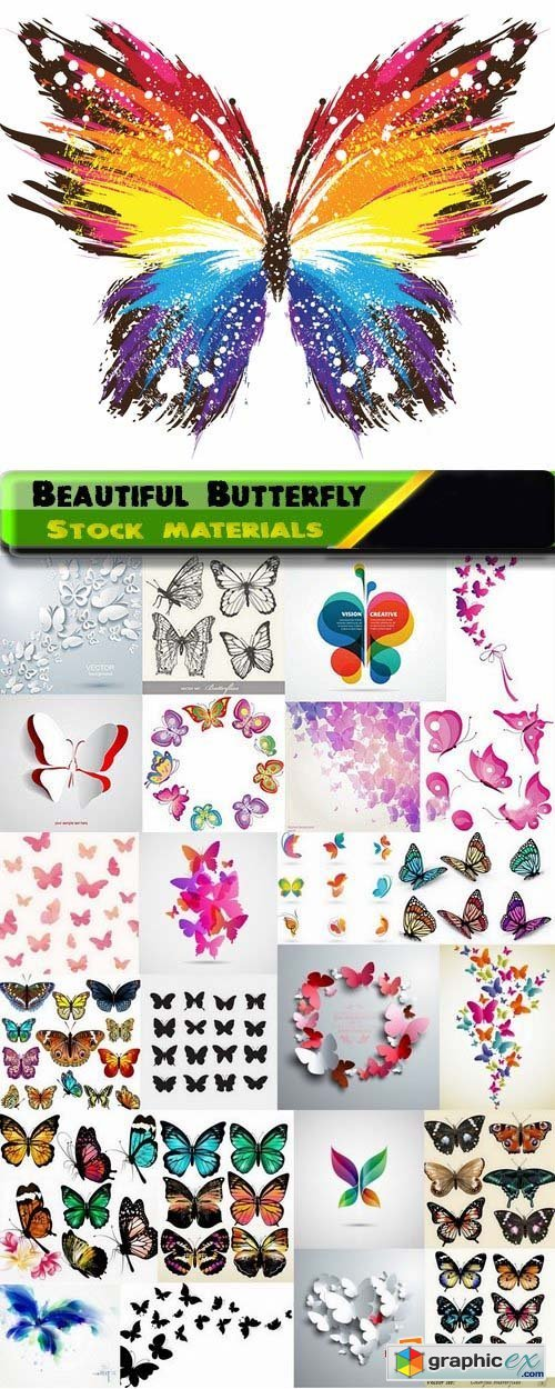 Colorful Beautiful Butterfly in vector 25xEPS
