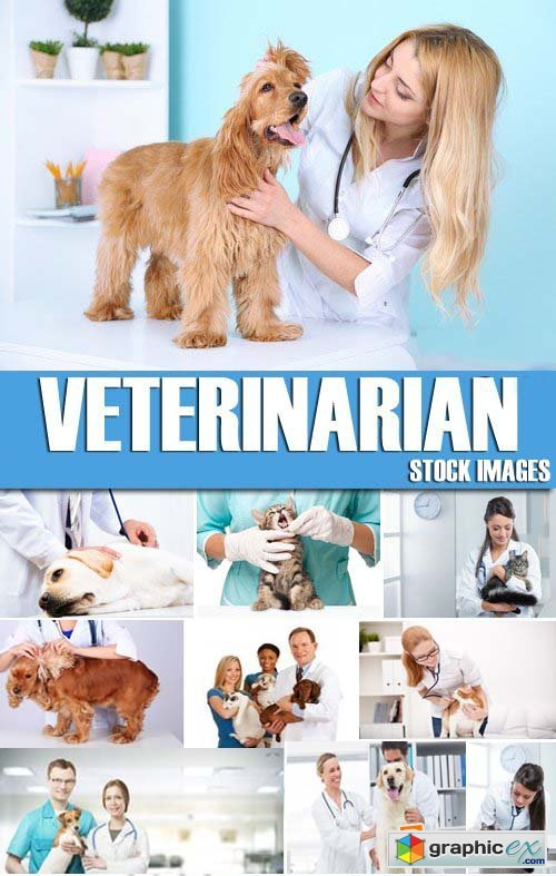 Stock Photos - Veterinarian, 25xJPG