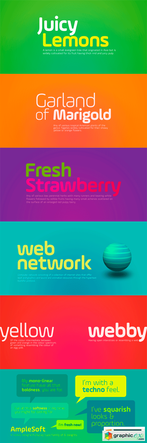 AmpleSoft Font Family - 6 Fonts