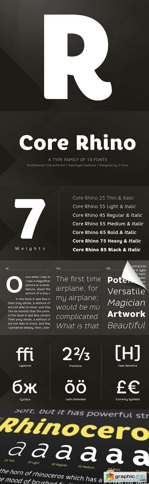 Core Rhino Font Family - 14 Fonts for $203