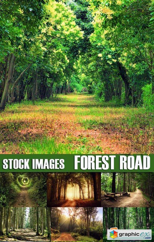 Stock Photos - Forest road, 25xJPG