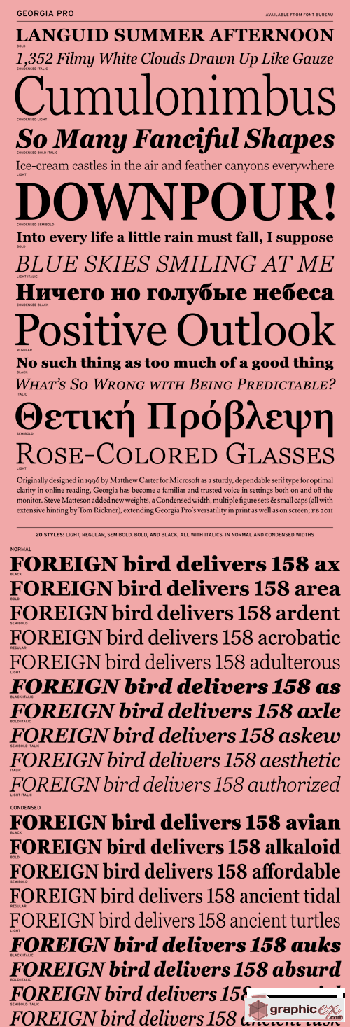 Georgia Pro Font Family - 20 Fonts for $560